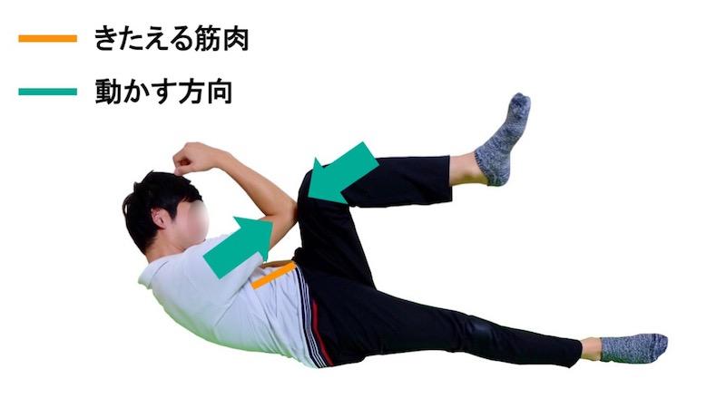 骨盤回旋筋の筋力トレーニング