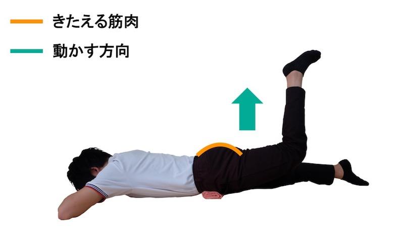 大殿筋の筋力トレーニング