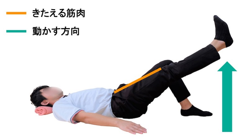 大腿直筋の筋力トレーニング