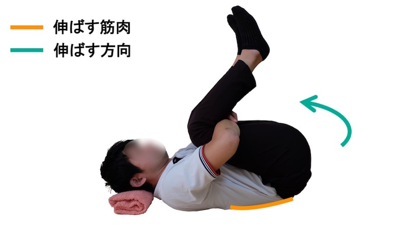 腰部脊柱起立筋のストレッチ