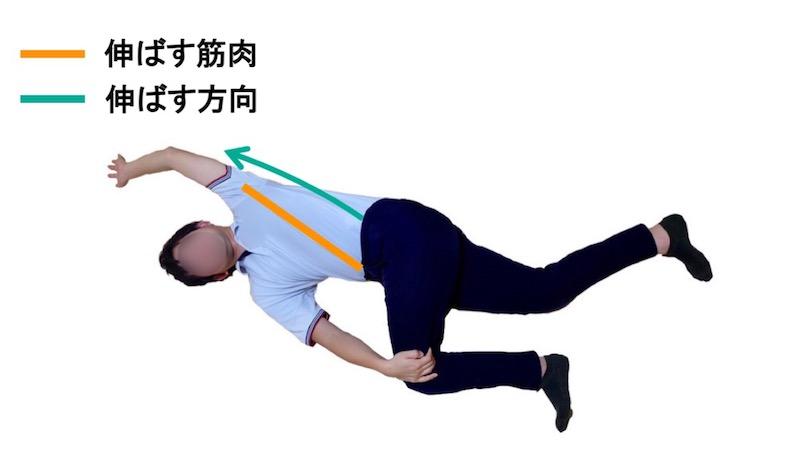 骨盤回旋のストレッチ