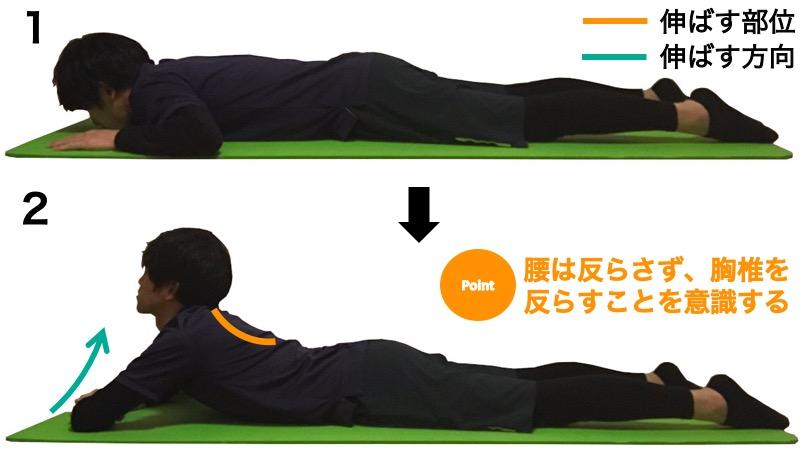 胸椎伸展の筋力トレーニング