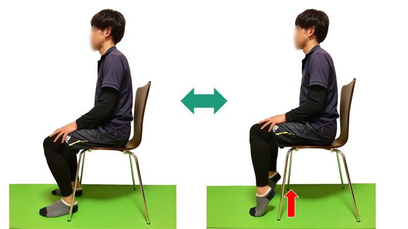 下腿三頭筋の反復収縮