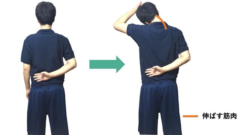 肩甲挙筋のストレッチ