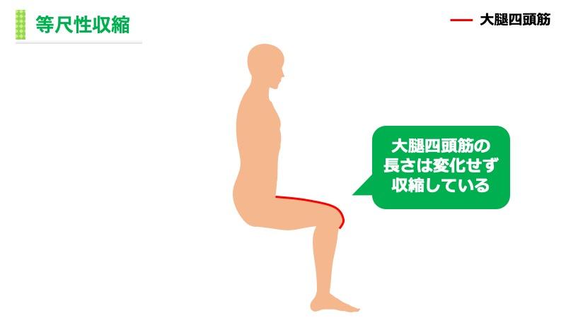 大腿四頭筋の等尺性収縮